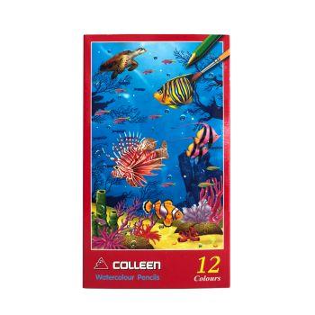 สีไม้ระบายน้ำ Colleen 12 สี 12 แท่ง กล่องกระดาษ