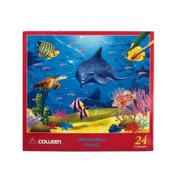 สีไม้ระบายน้ำ Colleen 24 สี 24 แท่ง กล่องกระดาษ