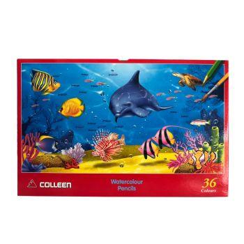สีไม้ระบายน้ำ Colleen 36 สี 36 แท่ง กล่องกระดาษ